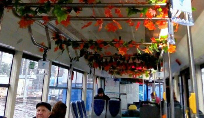 У «цветочного» трамвая в Ростове появился «конкурент»