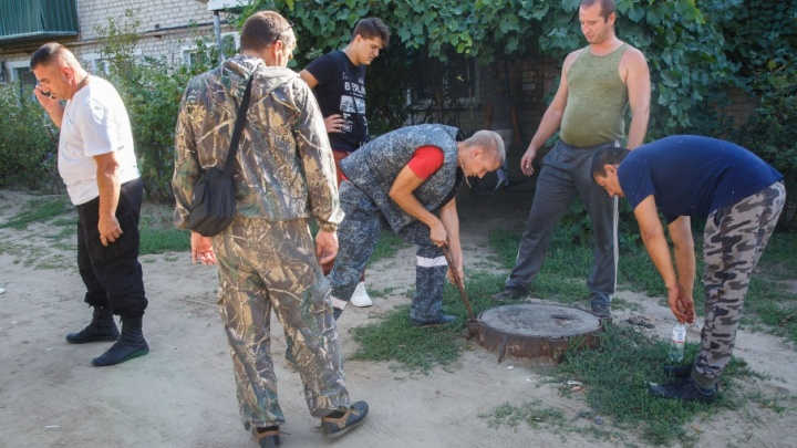 Калачевские волонтеры скрывают улики из-за обещанного миллиона