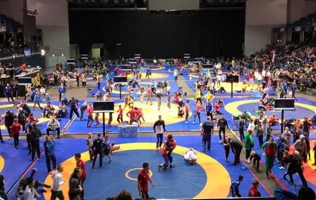 Борцы Поморья завоевали 15 медалей на международном турнире в Эстонии