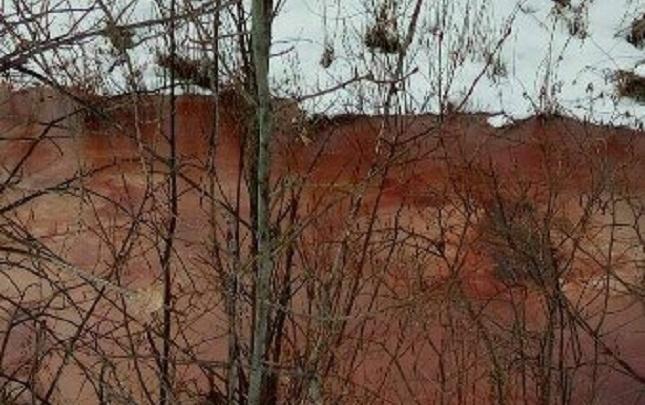 Тюменский тепличный комбинат обязали очистить канал, который окрасился в багровый цвет из-за сброса сточных вод