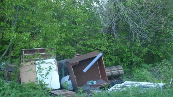 Вывезти мусор из парка «Бакарица» власти обещают в следующем году