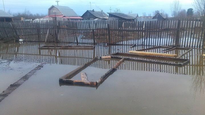 Река Усьва так поднялась впервые за 13 лет: в Прикамье затоплено 81 домашнее хозяйство