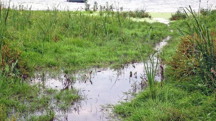 Ад на южноуральском озере: погибли четверо детей и трое взрослых