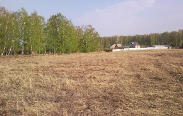 Многодетные семьи Челябинска рискуют остаться без обещанной бесплатной земли в пригороде