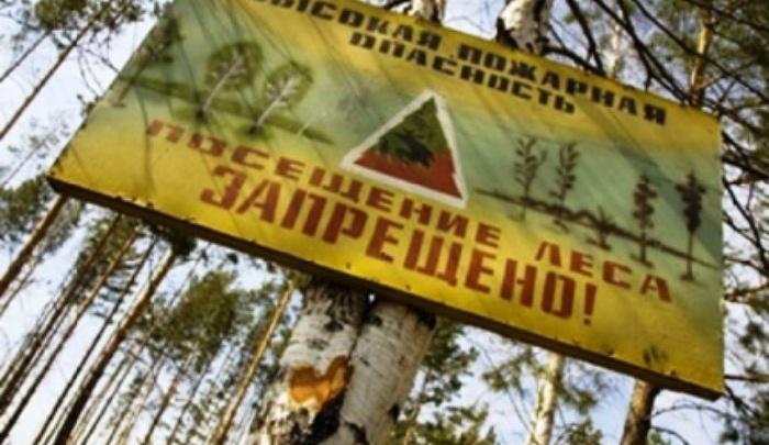 В Ярославской области ввели высокий класс пожароопасности
