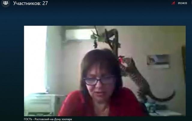Ростовским школьникам рассказали о жизни хищников