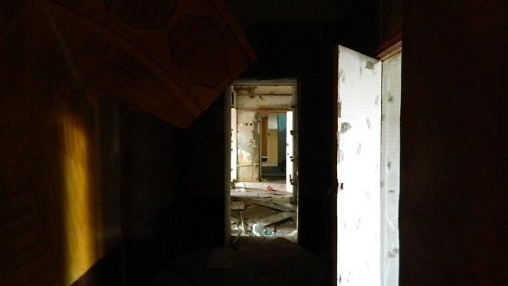 Территория устойчивого развития: волгоградский консервный завод стал приютом для бездомных