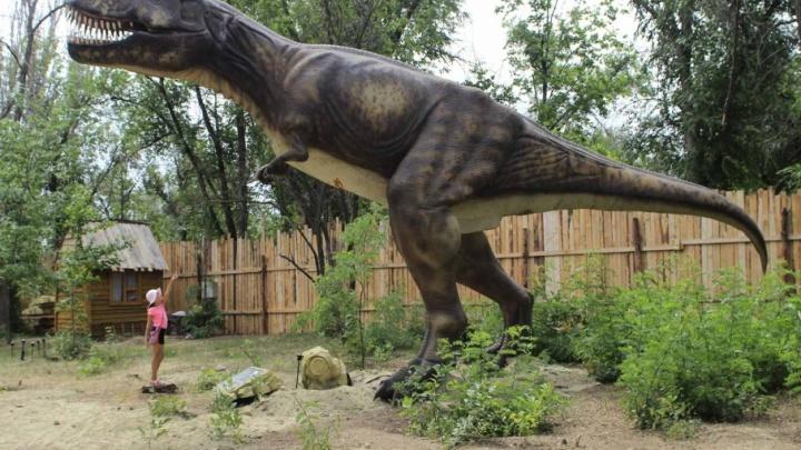 Резиновые динозавры возвращаются в волгоградский ЦПКиО