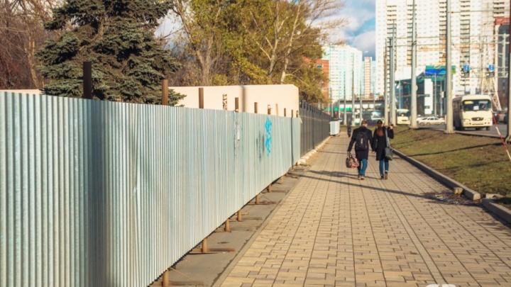 Вход в Ботанический сад перенесут на перекресток Московского шоссе и Врубеля