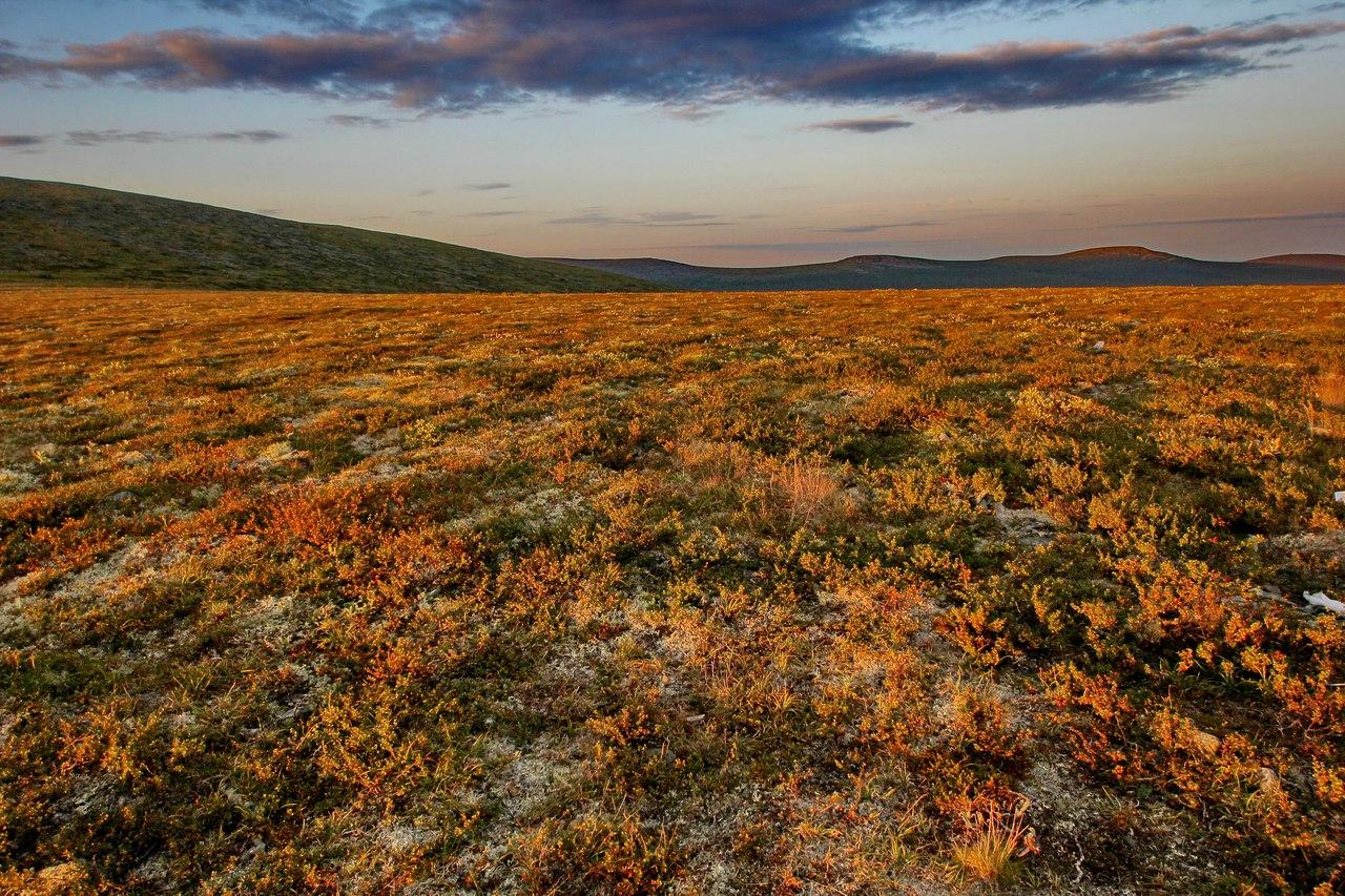 На плато очень ранимая природа, следы человека на мху и лишайниках остаются годами
