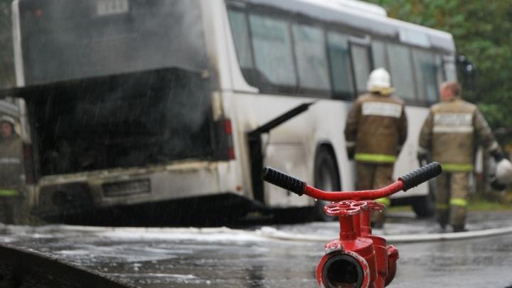 Пазик и «Газель» столкнулись на дороге Новодвинск–Холмогоры