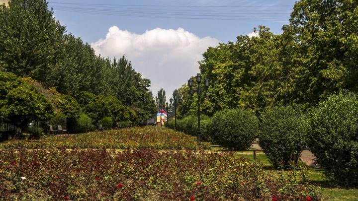 В ростовском парке «Аллея роз» больше месяца не работают фонари