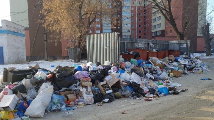 «Так и в прошлом году было»: Тефтелев пообещал убрать мусор, скопившийся во дворах