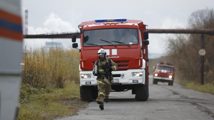Лесной пожар бушевал в Пинежском районе