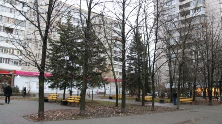 «Хочешь сделать хорошо — сделай это сам»: ростовские активисты облагородят сквер в центре города