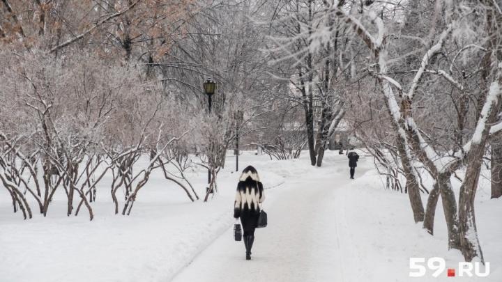 Сначала морозы, затем потепление: синоптики рассказали о погоде в Прикамье на февраль