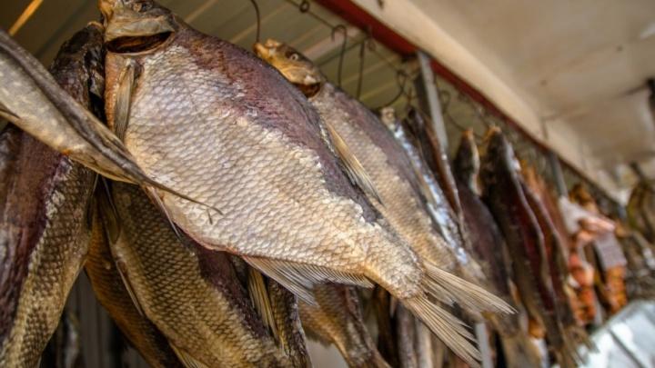 В Самаре увеличат штрафы за нелегальную продажу рыбы