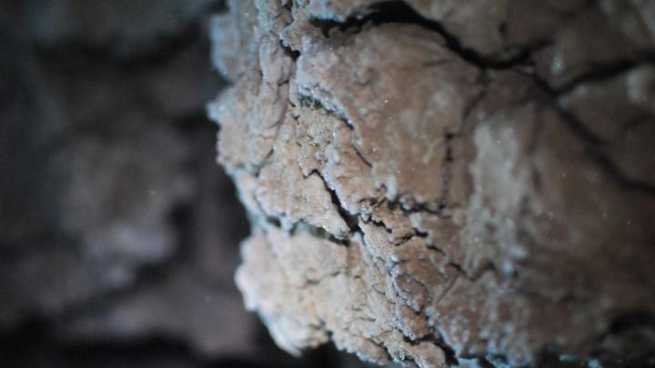 Похожа на раздвоенный язык змеи: пермские ученые исследовали новую пещеру в Прикамье
