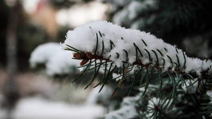 Утепляемся: на Дону ожидается «ледниковый период»