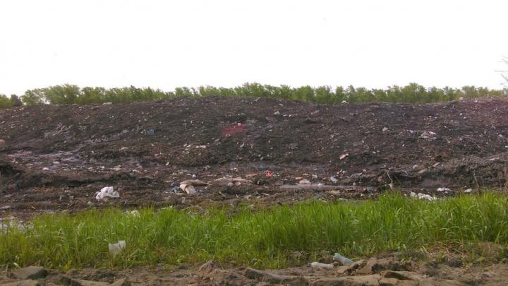 Двадцать гектаров грязи: почву под свалкой снега в Челябинске вывезут на помойку