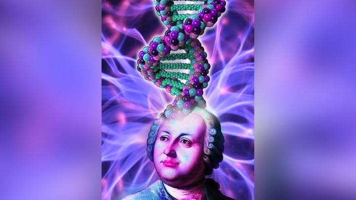 У Петра I на голове корабль, у Ломоносова – ДНК: художественная борьба за Дом молодежи набирает обороты