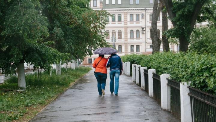 В Самарской области опять ожидают заморозки и дождь