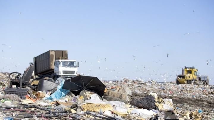 Считайте мусоровозы: на полигоне «Скоково» поставят онлайн-камеры
