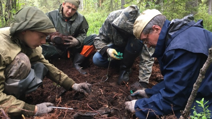 Архангельские поисковики нашли в Республике Карелия останки 55 красноармейцев