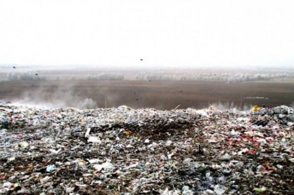 Чиновники объяснили, почему к нам можно везти мусор из Подмосковья