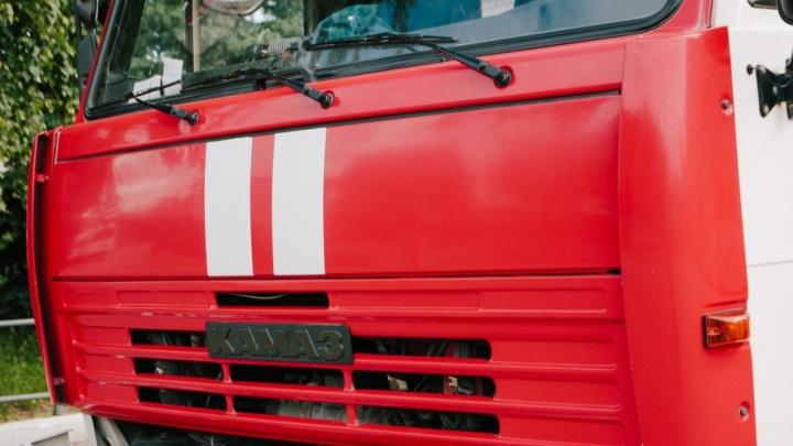 Тушили 10 тонн семян подсолнечника: в Самарской области сгорело ценное сырье