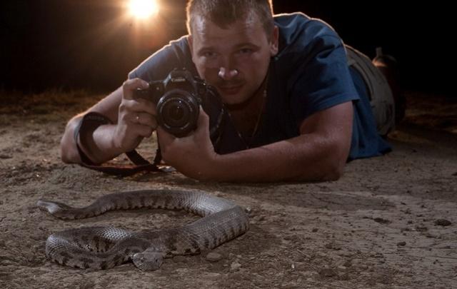 Волгоградец с риском для жизни снимает змей и скорпионов для National Geographic