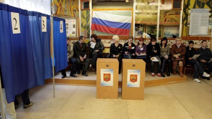 В Волгоградскую облдуму проходят директор музея и сын депутата