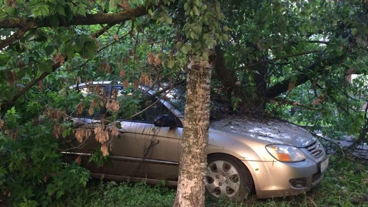 Природа наказала автомобилиста за парковку на газоне в центре Ярославля