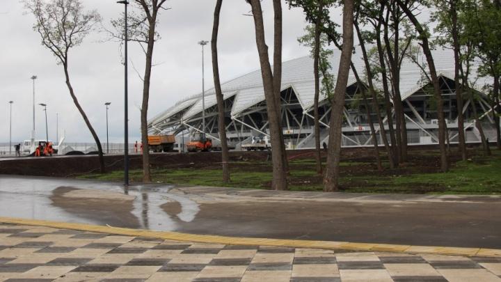 Газон в лесу, VIP-коридор и много заборов: что еще нового появилось на «Самара Арене»
