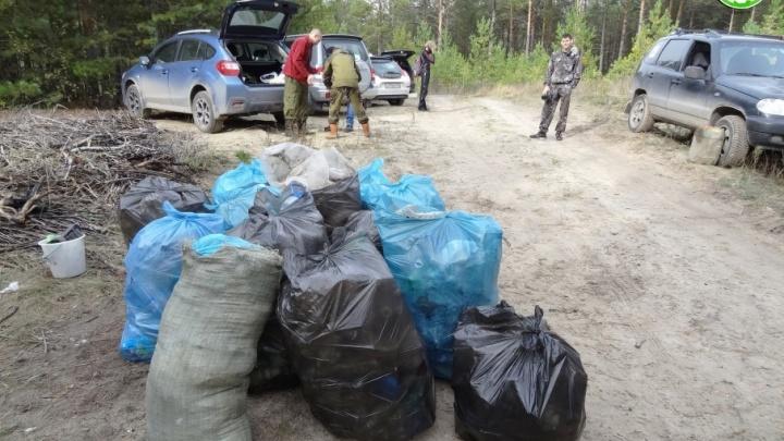 Убрать мусор и пообниматься с деревьями: тюменцев приглашают на лесные субботники