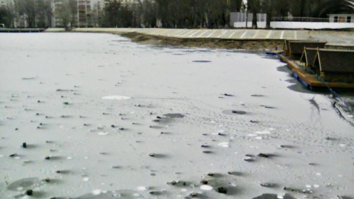 «Рыба же промерзнет»: в Самаре обмельчал пруд в парке Металлургов