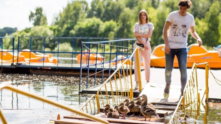 В Ярославль идет рекордная жара