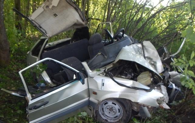 В Прикамье будут судить водителя, по вине которого погибла 24-летняя пассажирка