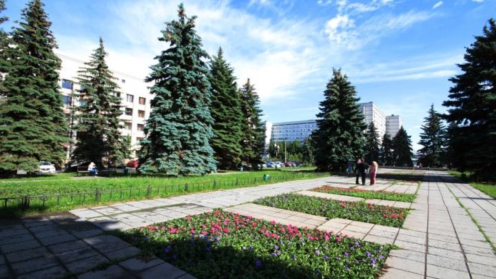 Июль в Челябинской области продолжает моросить: прогноз погоды на начало недели