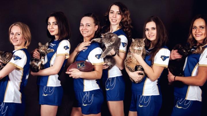Сильные и независимые: ярославские футболистки помогают котам найти дом