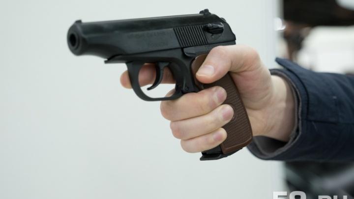 В Прикамье на время проведения чемпионата мира по футболу запретят охотиться и стрелять в тирах