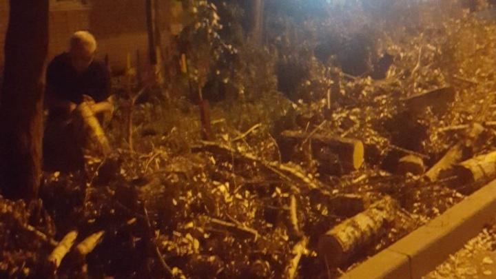 В Александровке работники ЖКХ обрезали деревья и оставили ветки на тротуаре