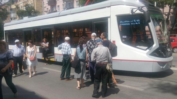 Остановить исчезновение «рогатых»: жители Ростова выйдут на пикет, чтобы защитить трамваи и троллейбусы