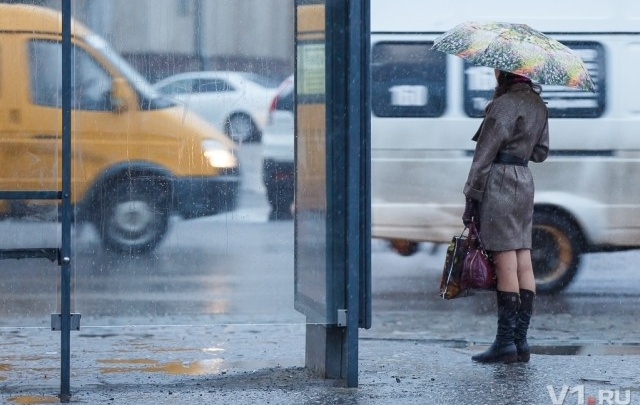 Вслед за Москвой непогода обрушится на Волгоград
