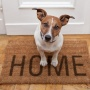 Ищем скидки: обустраиваем дом по выгодным ценам!