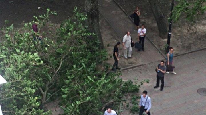 В Ростове шестиметровое дерево и часть крыши рухнули из-за шквалистого ветра