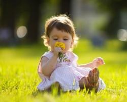 Что взять с собой, отправляясь на природу с малышом