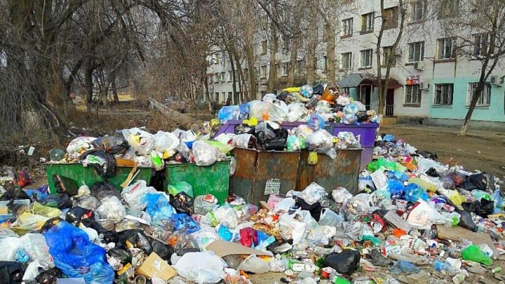 Общежитие в Кировском районе Волгограда утонуло в мусорных завалах