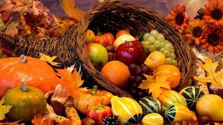 Волгоградцев приглашают на праздник осеннего равноденствия