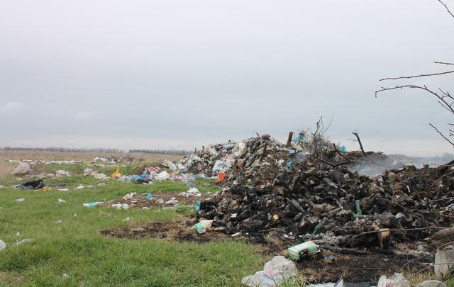 Чиновники определили цвета контейнеров для раздельного сбора мусора